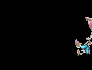 flower background 300x229 - flower-background