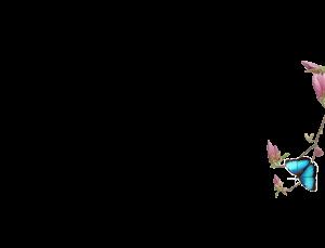 flower background2 300x229 - flower-background2